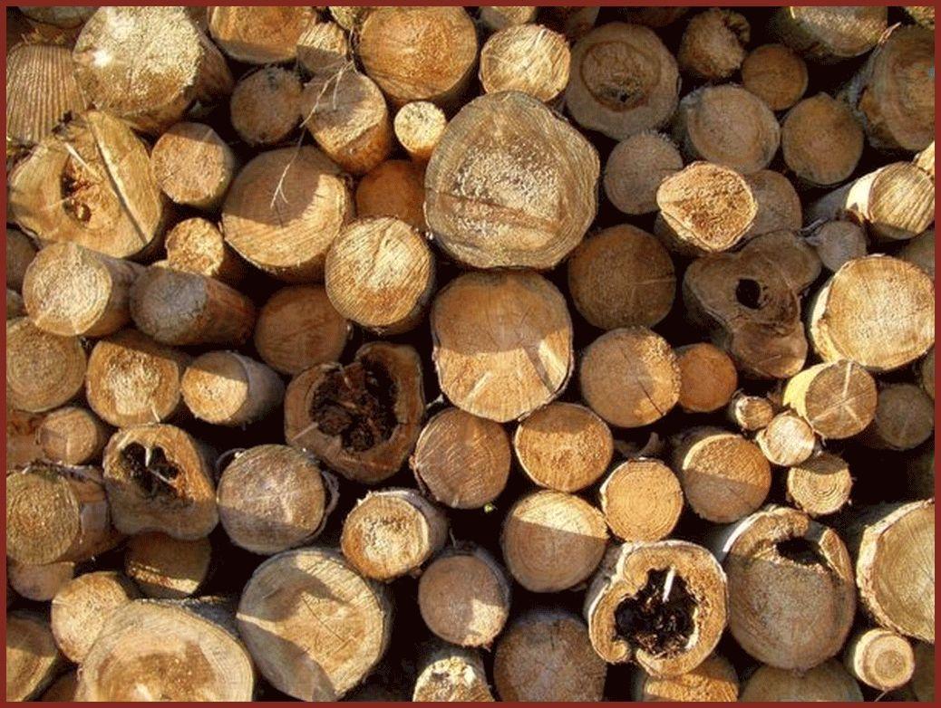 schreinerei-bederke-naturholz_39