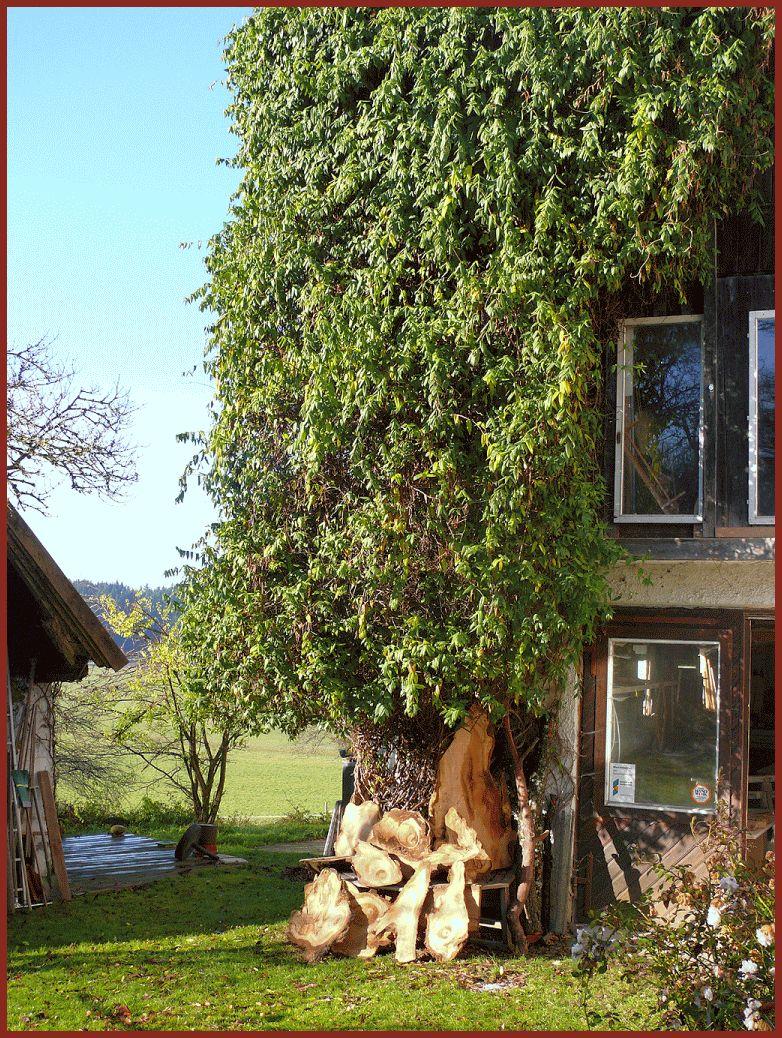 schreinerei-bederke-naturholz_45