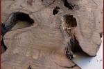 schreinerei-bederke-naturholz_9